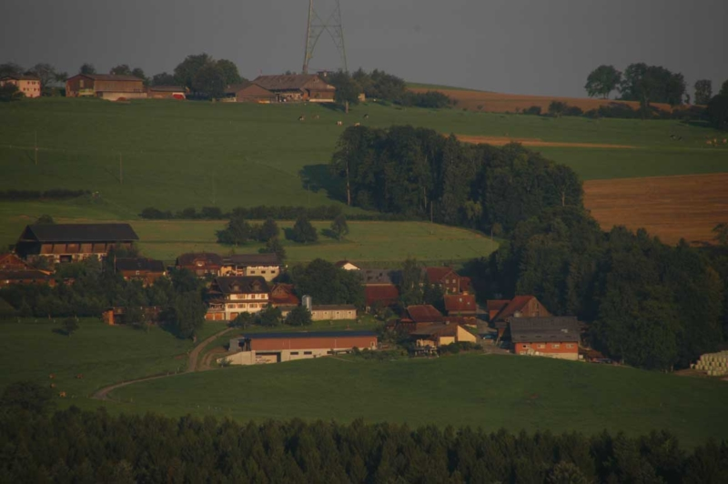 Galliker Hof